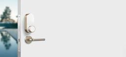 GLUE SKANDINAAVIA STANDARD VERSIOON (komplektis Wi-Fi moodul) KULDNE